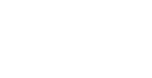 Sue Firestone Collection